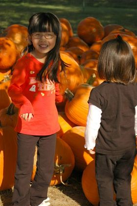 Pumpkin_farm_2007_008