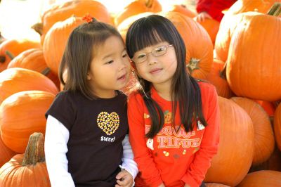 Pumpkin_farm_2007_034
