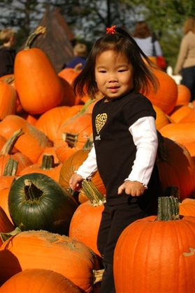 Pumpkin_farm_2007_043
