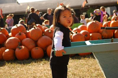 Pumpkin_farm_2007_076