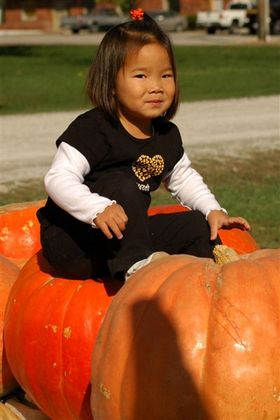 Pumpkin_farm_2007_082