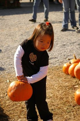 Pumpkin_farm_2007_099