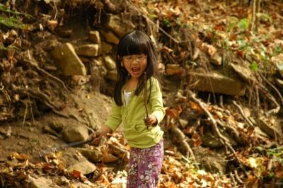 Woods_october_2007_137