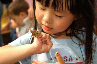 Butterflyshow2006_071