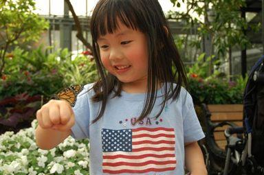 Butterflyshow2006_106_1