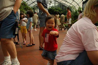 Butterflyshow2006_121