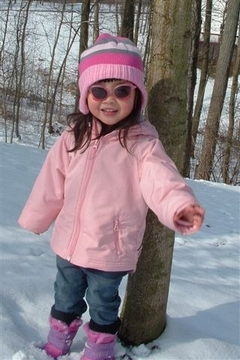 Snow2006