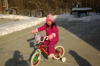 Snow2007
